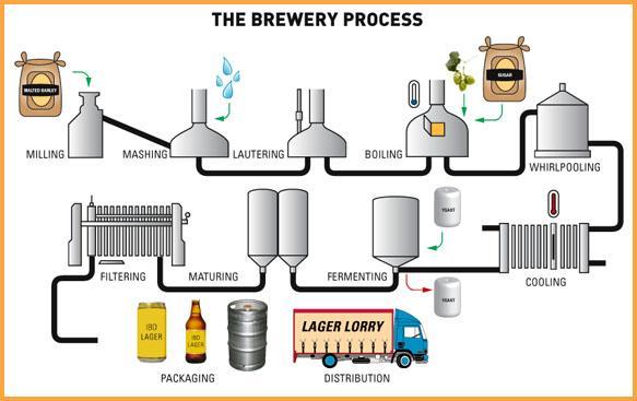 proceso elaboración cerveza artesanal